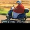 Автодорога Мамыри -«Солнцев... - последнее сообщение от скутер
